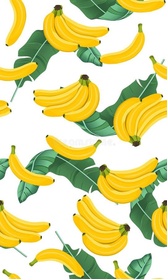 Banaan naadloos patroon met banaanbladeren, Bos van rijpe bananen op witte achtergrond Tropisch Fruit stock illustratie