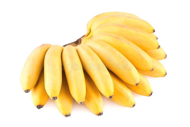 Banaanbos royalty-vrije stock afbeelding