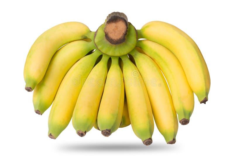 Banaanfruit op wit wordt geïsoleerd dat stock foto