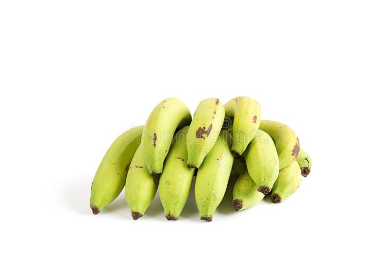 banan royaltyfri fotografi
