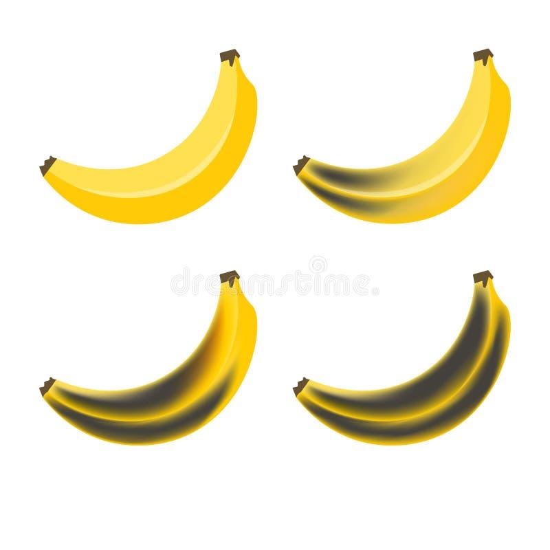 banan Etapp av att ruttna bananer Härlig gul ny och gammal rutten frukt royaltyfri illustrationer
