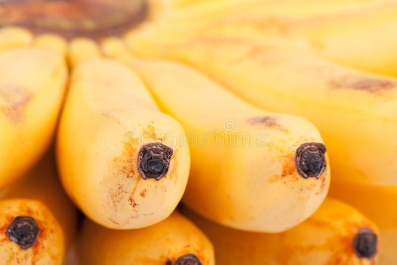 Banan makro- zdjęcia stock