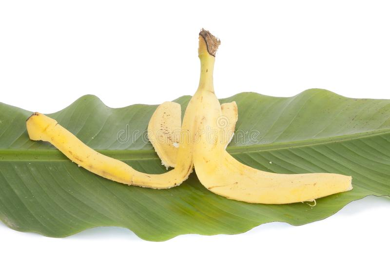 Banan på bladet arkivbild