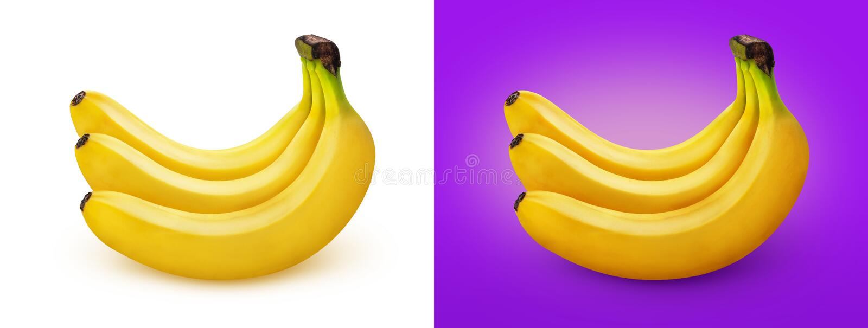 banan tło bananów kiście pojedynczy white ilustracji