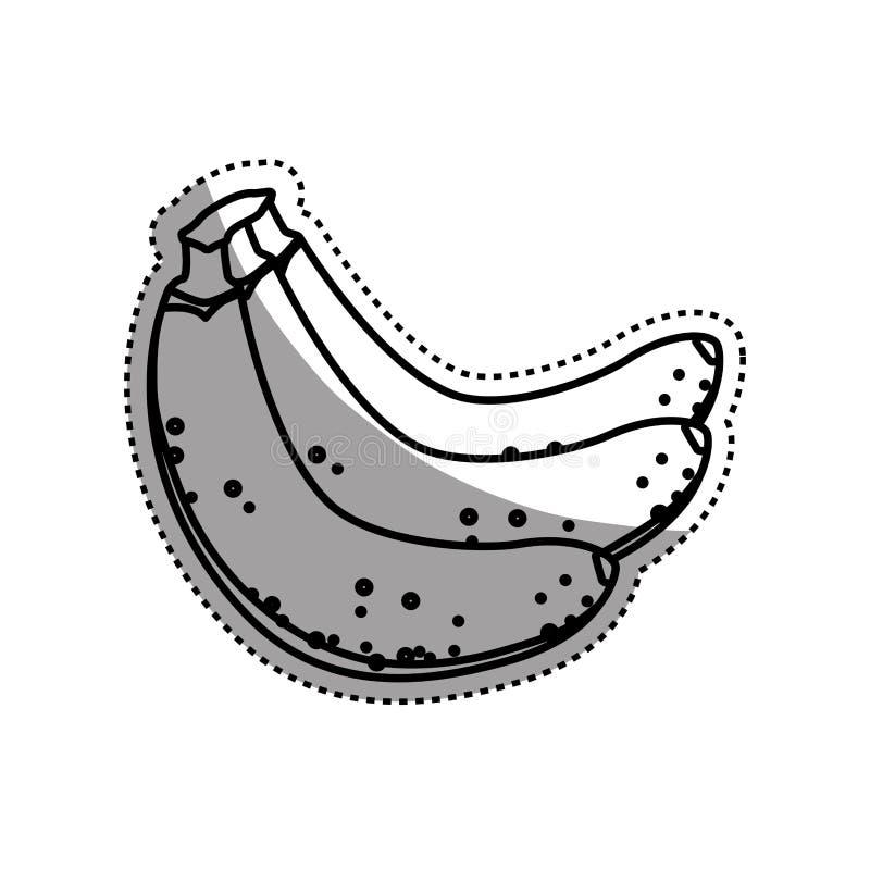 Banan wyśmienicie owoc ilustracja wektor