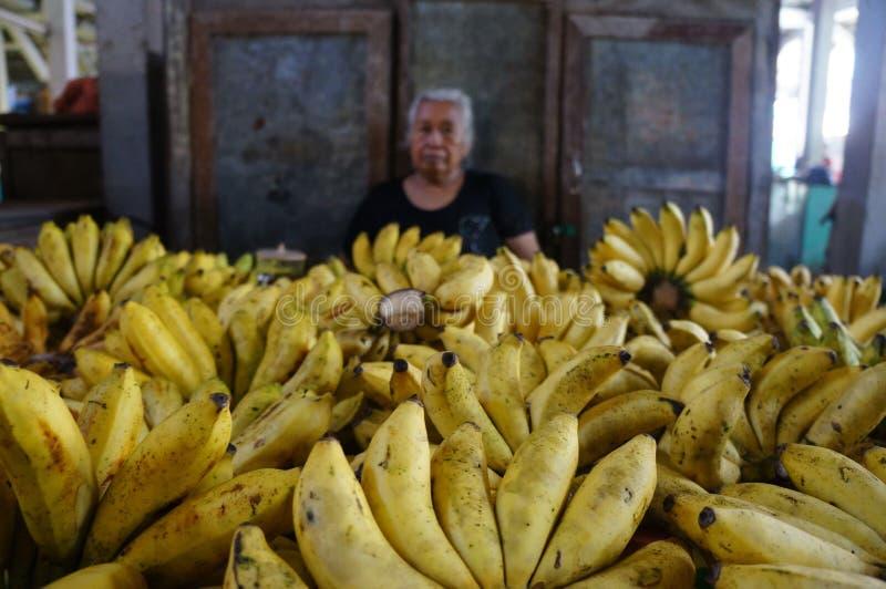 Banana immagini stock