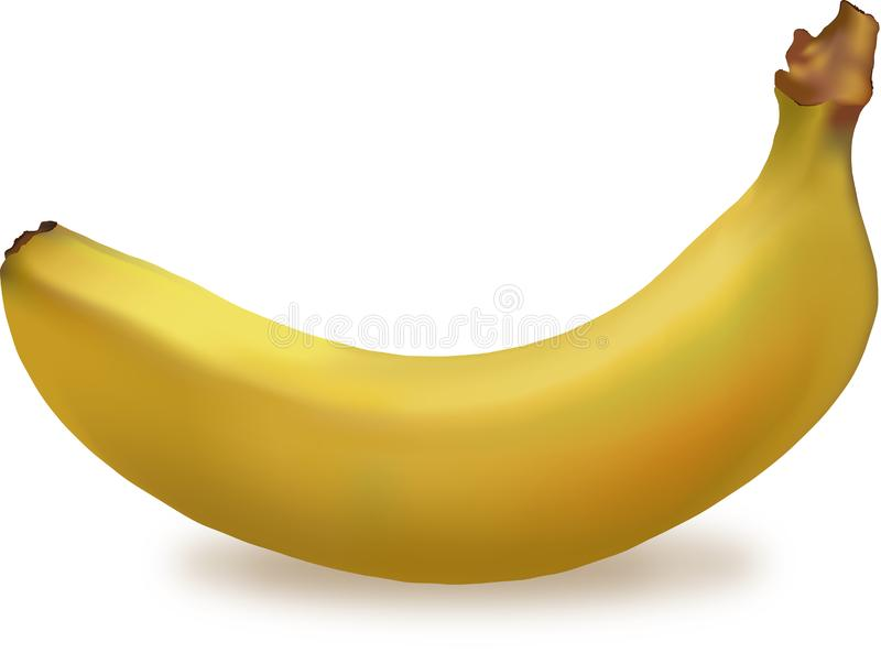 Banana royalty free stock photo