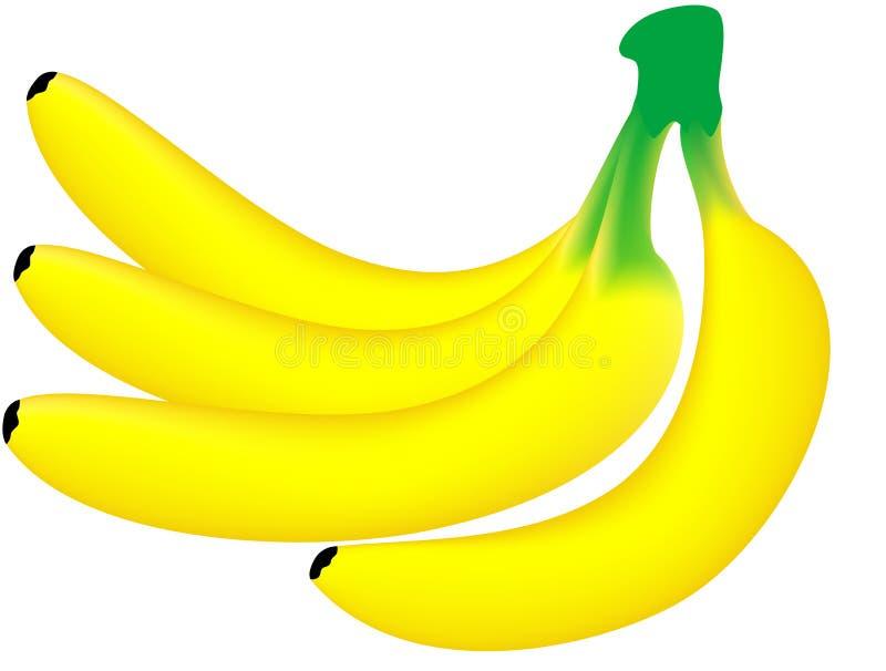 Download Banana stock vector. Illustration of snack, gourmet, aliment - 8567013