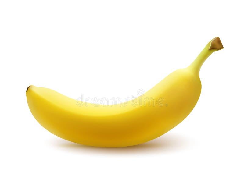 Banana amarela madura ilustração royalty free