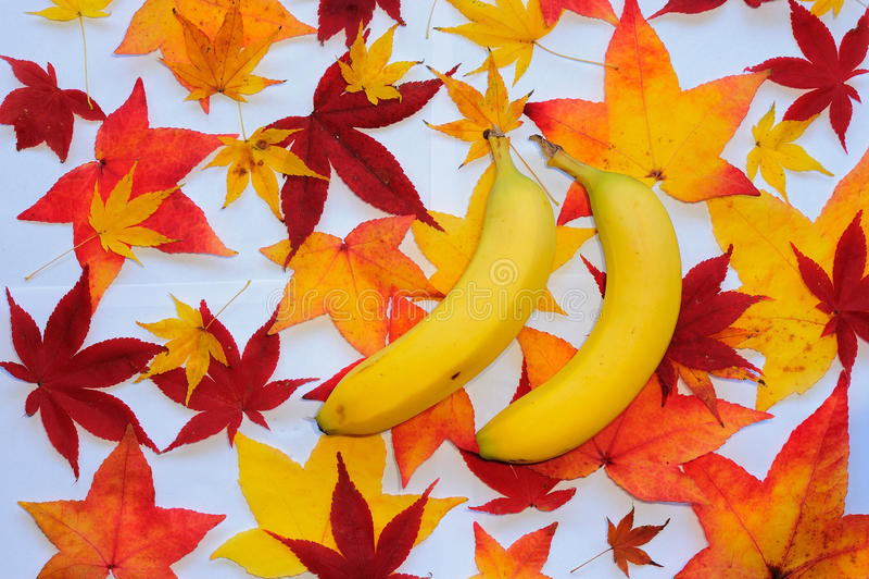 Banana with autumn leaves stock photos