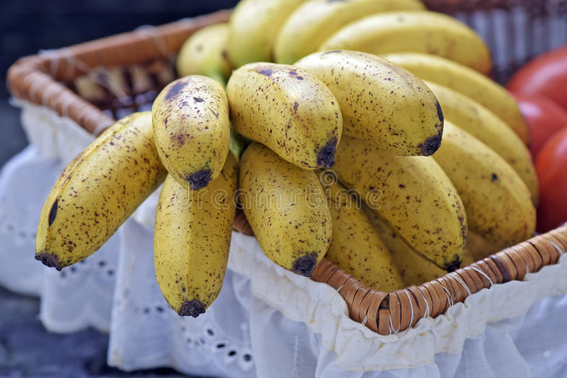 Banana bunch in fruit basket with white frill royalty free stock images