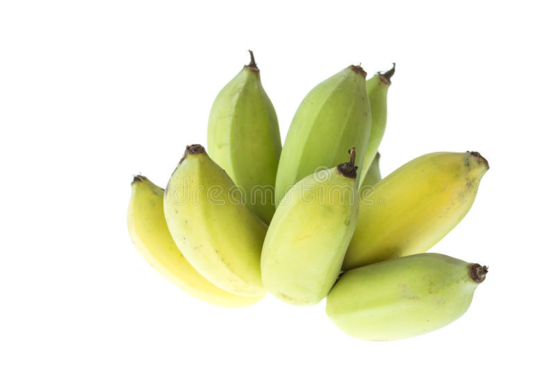 Banana coltivata, banana tailandese isolata su bianco fotografie stock
