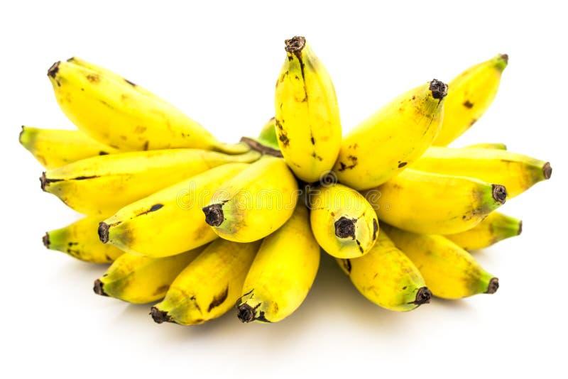 Banana doce imagem de stock
