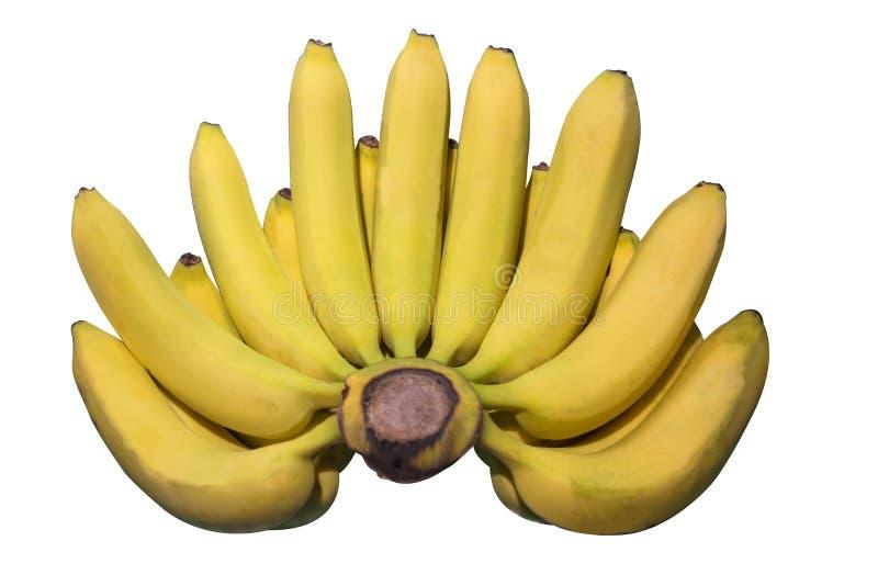 Banana fresca Raccolta isolata su fondo bianco immagine stock