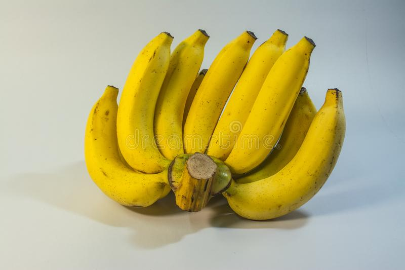 Banana fruit. Banana is a herbaceous species. There are many varieties. Cavendish is a popular banana. It is a nutritious fruit that is rich in nutritious stock image