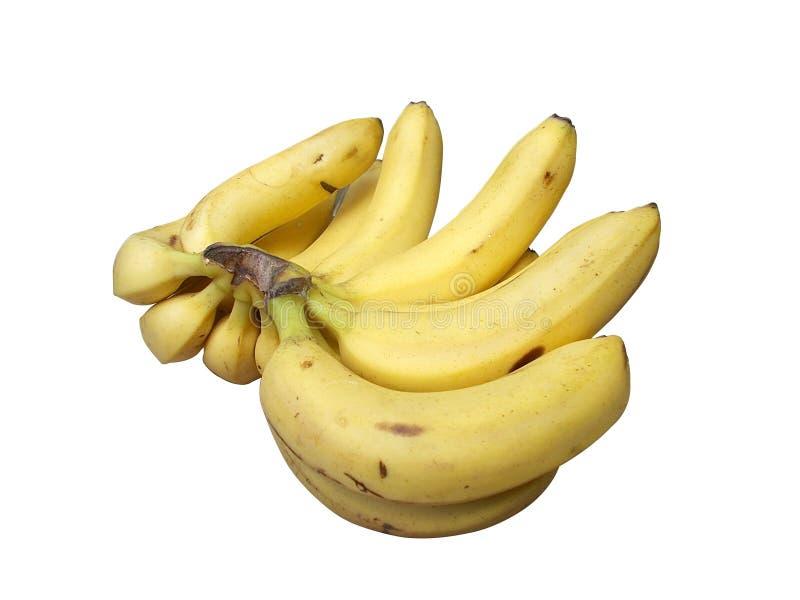Download Banana fruits stock image. Image of isolated, background - 97395533