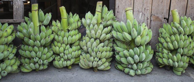 Banana fruits market thailand royalty free stock photography