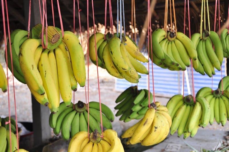 Banana gialla fotografia stock libera da diritti