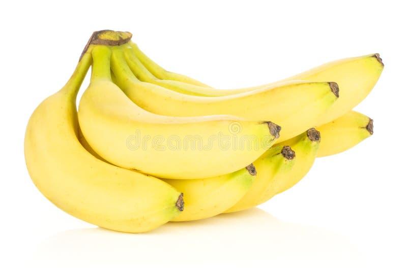 Banana gialla fresca isolata su bianco immagine stock libera da diritti