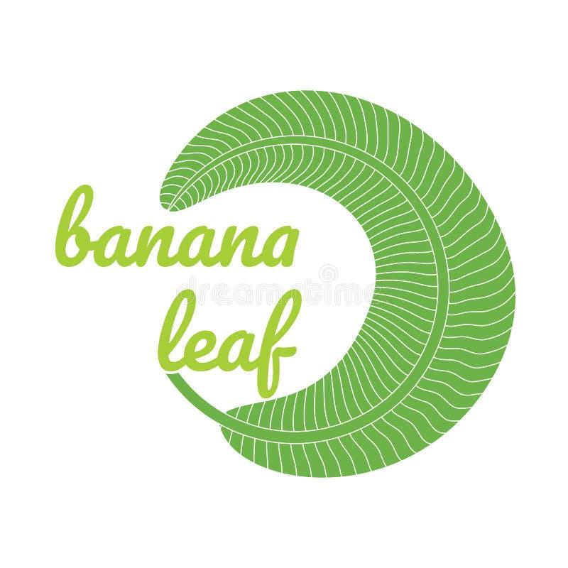 Banana green leaf logo. Banana green leaf tropical logo. vector illustration vector illustration