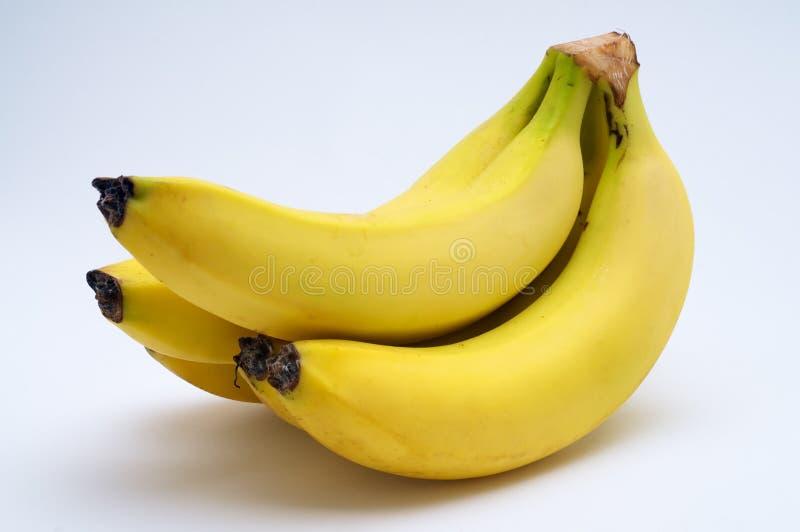 Download Banana healthy stock image. Image of food, health, fruit - 22127413