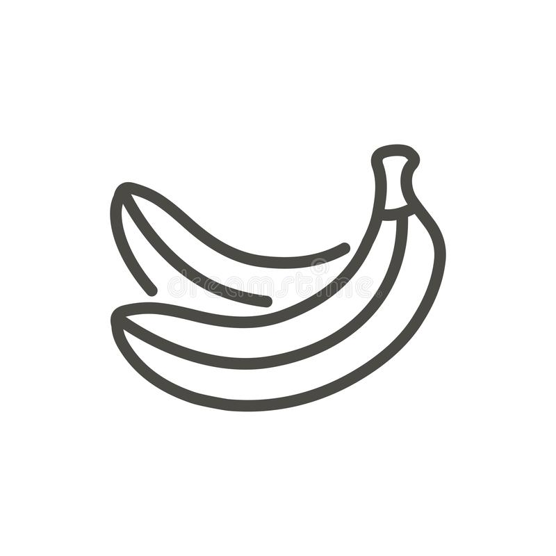 Banana icon vector. Outline fruit, line banana symbol. vector illustration