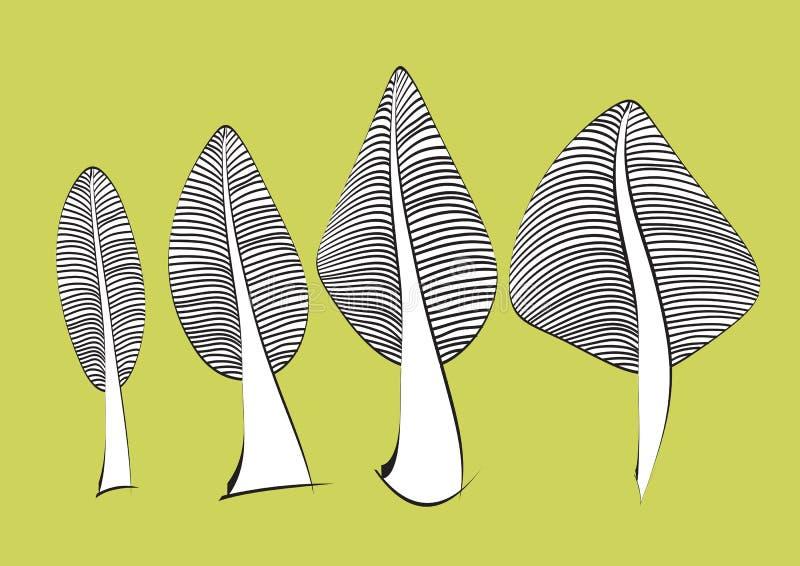 Banana leaf icon vector illustration, Banana leaf hand drawn in Black and white stock illustration