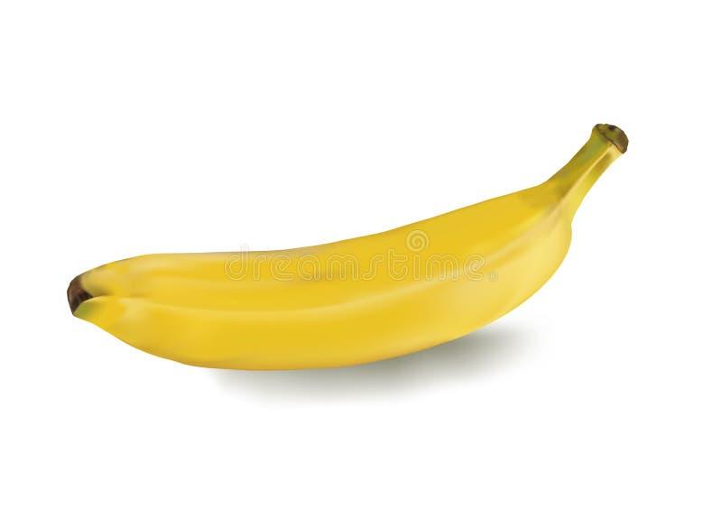 Banana madura ilustração do vetor