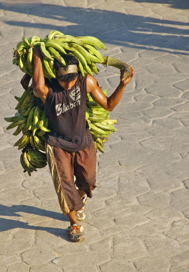 Download Banana Man, Colombia editorial photography. Image of bunch - 26507452