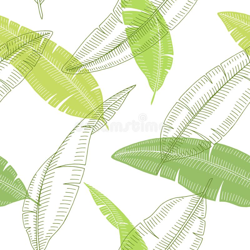 Banana palm leaf graphic color sketch seamless pattern background illustration vector royalty free illustration