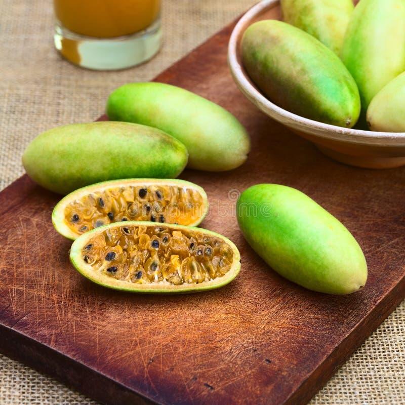 Banana Passionfruit (lat. Passiflora Tripartita). Latin American fruit called banana passionfruit (lat. Passiflora tripartita) (in Spanish mostly tumbo, curuba royalty free stock photography