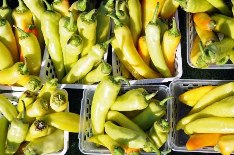 Banana Peppers Stock Photography