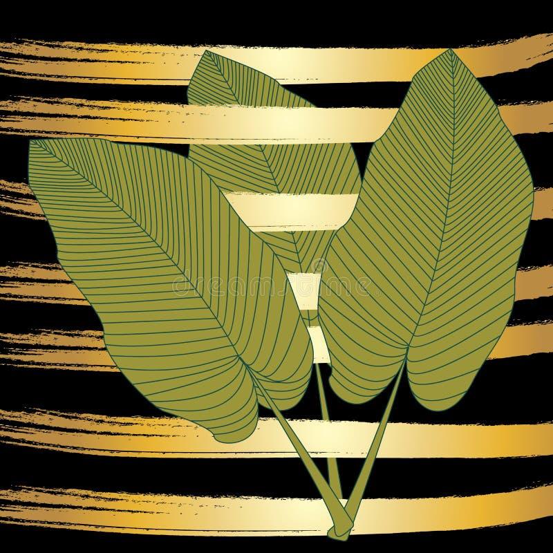 A banana sae em um fundo preto e em umas listras douradas do vetor, ilustração moderna do vetor, folhas de palmeira tropicais, te ilustração royalty free