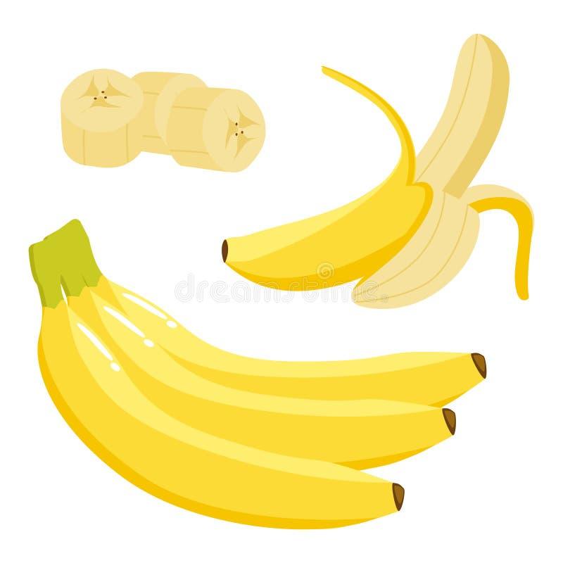 Banana Set. Bunch, single, peeled and sliced. Vector illustration. Banana Set. Bunch, single, peeled and sliced Colored vector illustration vector illustration