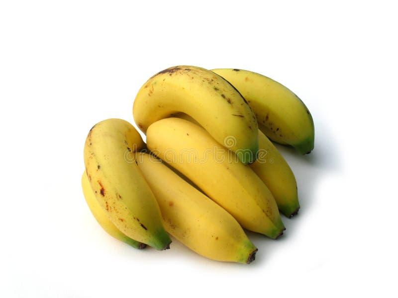 Banana su priorità bassa bianca immagine stock