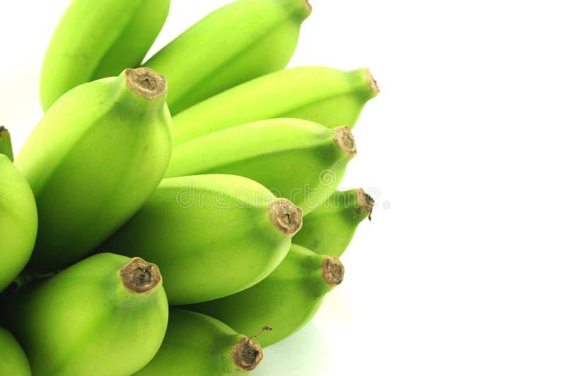 Banana tailandesa no fundo branco imagem de stock