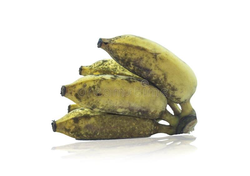 Banana tailandese fotografia stock