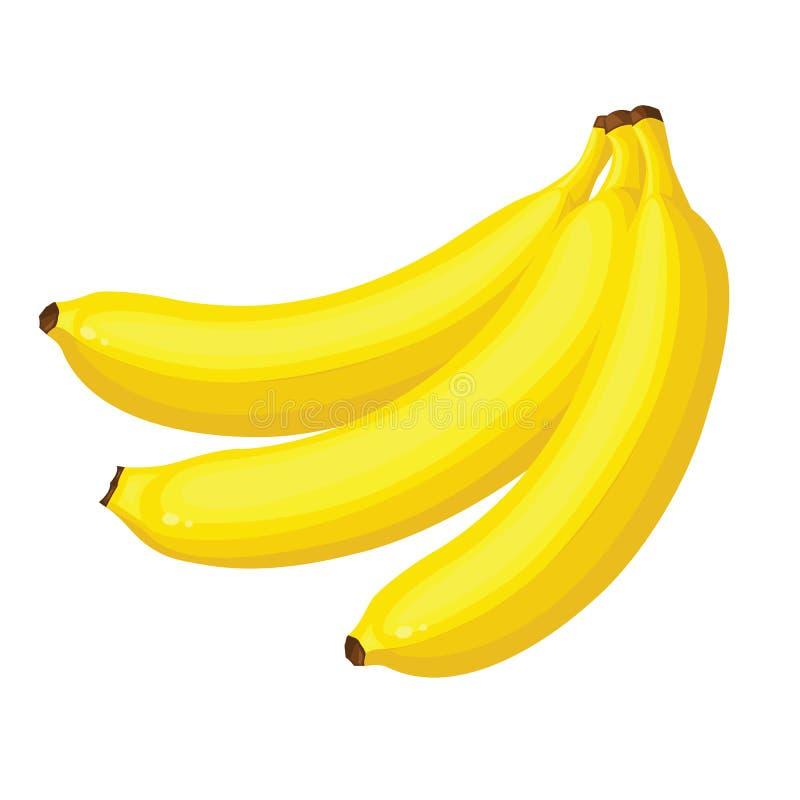Banana vector illustration