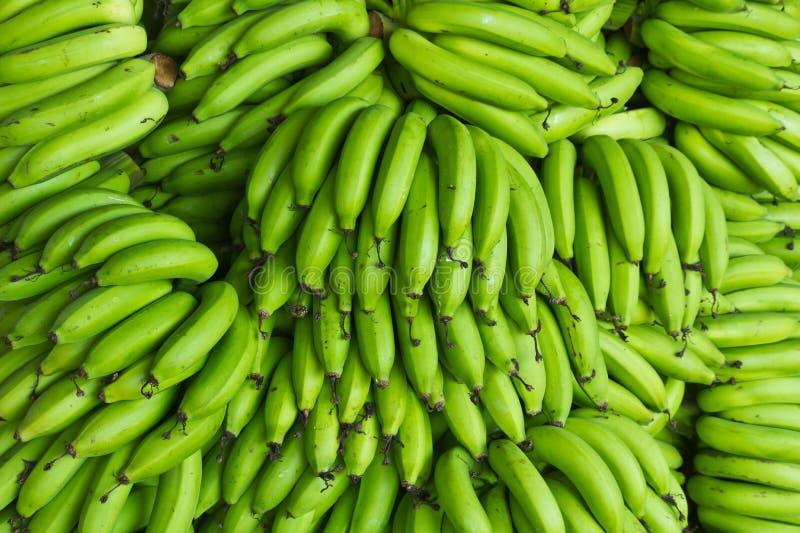 Banana verde fresca fotografia de stock