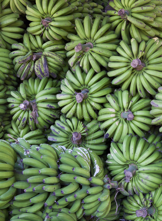 Download Bananas stock photo. Image of green, diet, madagascar - 18183074
