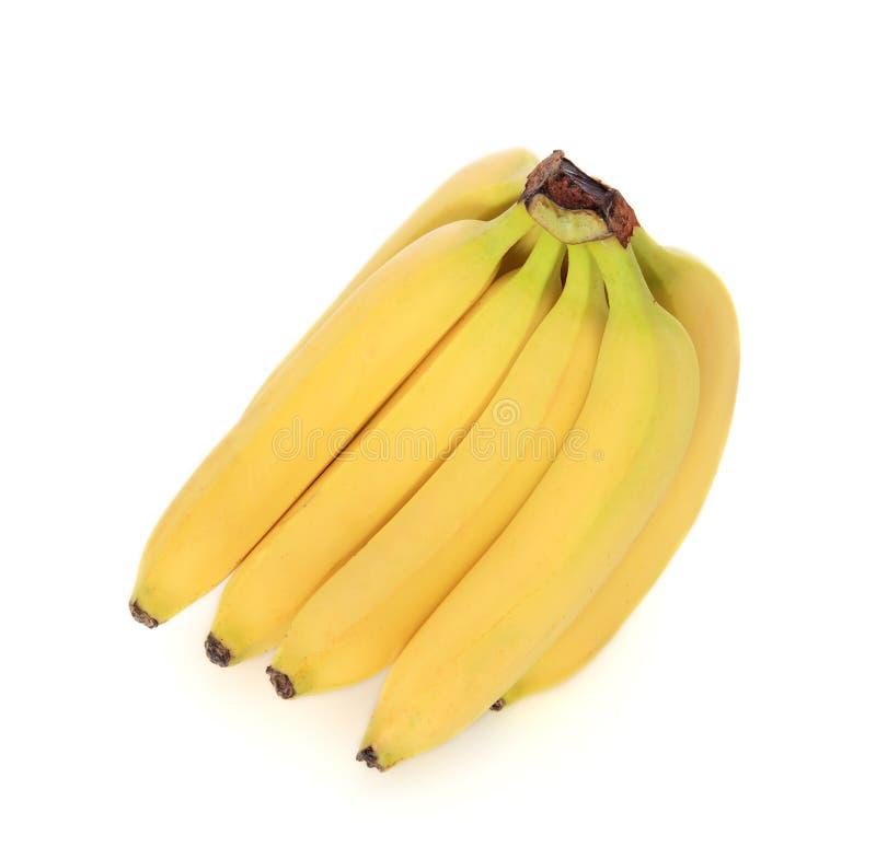 Download Bananas stock image. Image of banana, ripe, produce, food - 19925367