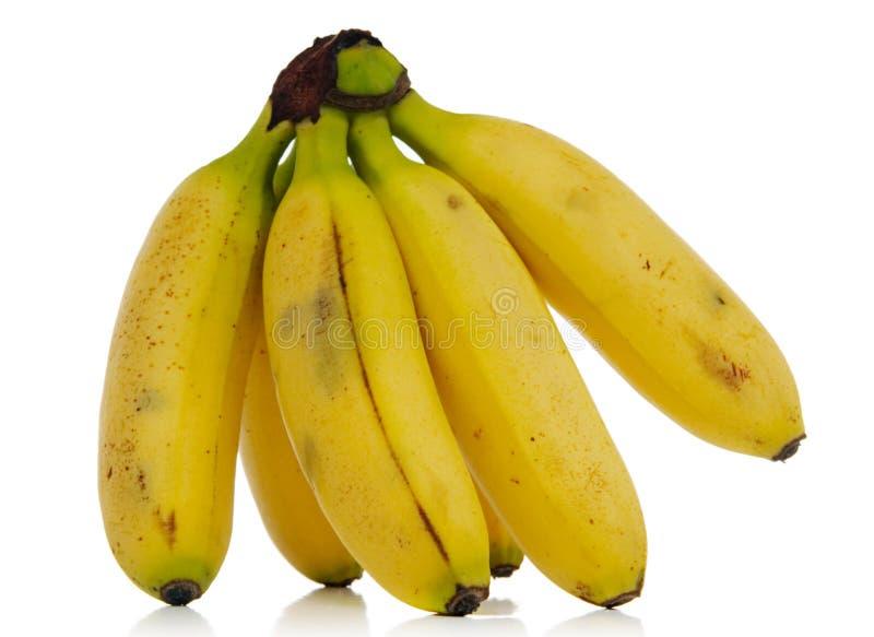 Download Bananas Royalty Free Stock Image - Image: 2309476