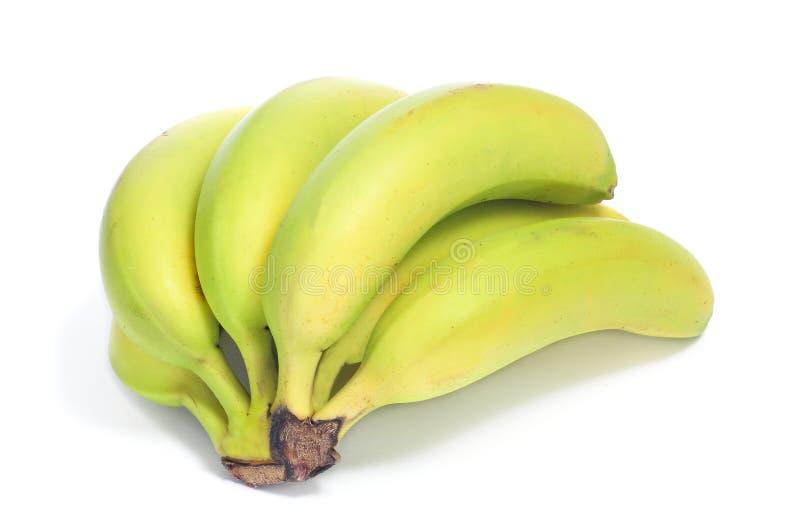 Download Bananas stock image. Image of natural, meal, antioxidant - 28130691