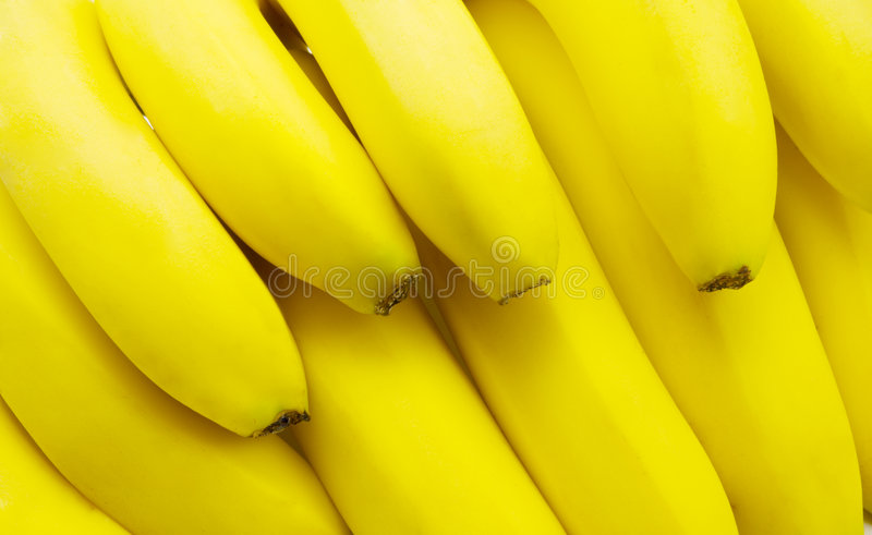 Download Bananas stock image. Image of healthy, bright, dessert - 5661721
