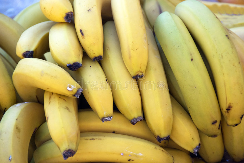 Bananas. A bunch of bananas - for background use royalty free stock photography