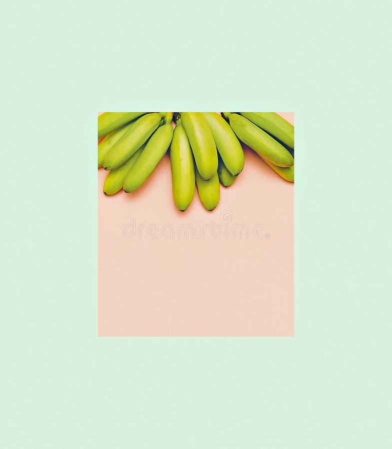 Bananas da foto da forma no fundo cor-de-rosa Styl geométrico mínimo imagens de stock royalty free