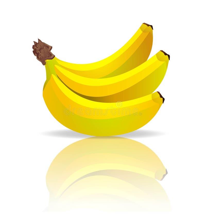 Bananas do vetor ilustração do vetor