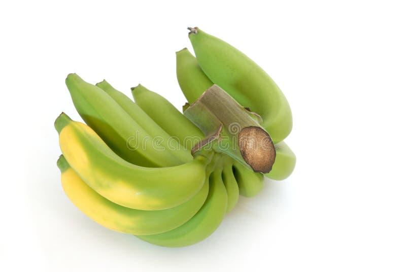 Bananas em um fundo branco do estúdio imagem de stock