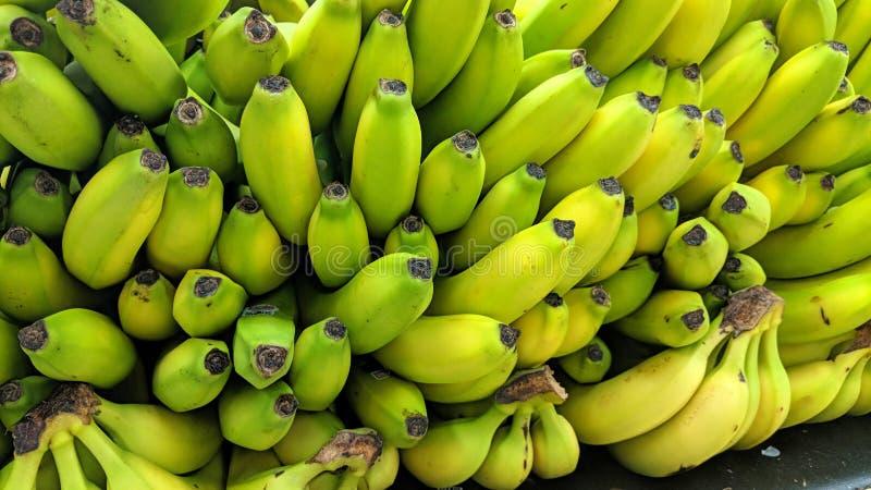 Bananas empilhadas ilustração do vetor