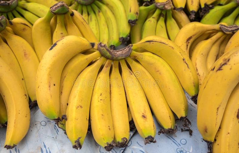 Bananas frescas no mercado local da cidade fotografia de stock royalty free